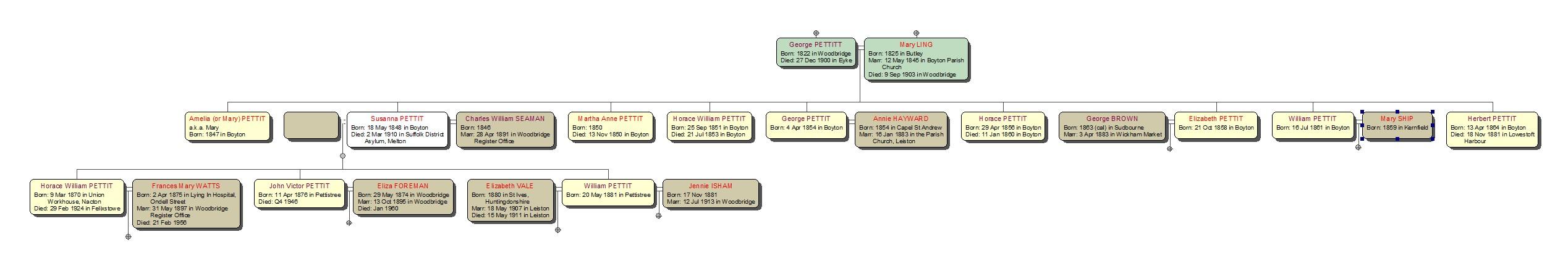 Descendants of William Pettit 1771 and Lucy Buckingham